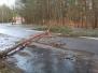 2019.03.08 Drzewo na drodze ul. Wadąska