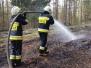 2019.04.24 Pożar lasu Dąbrówka Wielka
