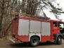 2020.03.06 Drzewo Dywity ul. Olsztyńska